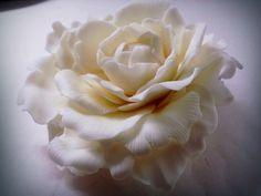 peonia bianca .. #cakedesign #torta  #decoration #fondant #diy #pastadizucchero