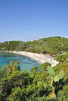 Fetovaia Beach,Elba Island,Italy
