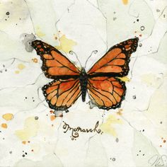 Monarch Butterfly Print,on Etsy