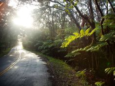 Kilauea : Living in the Moment on Hawaii Island : TravelChannel.com