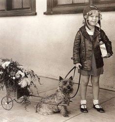 17 Classic Hollywood Stars Who Were Just As Dog Crazy As You The only thing cuter than child star Shirley Temple was Shirley Temple with her pet Cairn Terrier. Old Hollywood Stars, Classic Hollywood, Vintage Pictures, Dog Pictures, Shirley Temple, Celebrity Dogs, Cairn Terriers, Terrier Dogs, Cairns