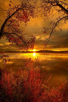 """philkoch: """"Mother Nature's Son""""Sunset on Mauthe LakeWisconsin Horizons By Phil Koch.Lives in Milwaukee, Wisconsin, USA. … philkoch: """"Mother Nature's Son""""Sunset on Mauthe LakeWisconsin Horizons By Phil Koch.Lives in Milwaukee, Wisconsin, USA. Pretty Pictures, Cool Photos, Amazing Photos, Landscape Photography, Nature Photography, Photography Tips, Digital Photography, Portrait Photography, Photography Composition"""