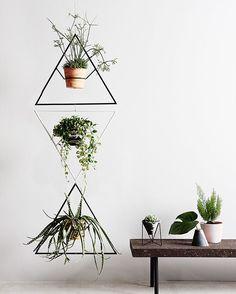 Capra Designs create unique homewares specialising in indoor and outdoor plant displays and eco resin vessels.
