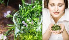 Planta puternica, buna pentru creier, inima, vase, piele, par si silueta. Te va scapa si de stres - Diy And Crafts, Health, Medicine, Plant, Health Care, Salud