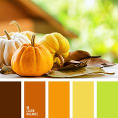 желтый, коричнево-красный, насыщенный салатовый, осенние оттенки, оттенки коричневого, рыже-коричневый, цвет тыквы, цвета для осени, цвета осени 2017, шоколадный, яркий желтый, яркий салатовый.