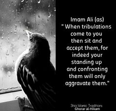 MAULA A.S Hazrat Ali Sayings, Imam Ali Quotes, Hindi Quotes, Quotations, Truth Quotes, Wisdom Quotes, Life Quotes, Hadith, Religious Quotes