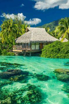 Maldives Luxury Travel breathtaking travel wanderlust water explore relax vacation tourist bucket list Just Go Schomp BMW Places Around The World, Oh The Places You'll Go, Travel Around The World, Places To Travel, Travel Destinations, Places To Visit, Time Travel, Holiday Destinations, Holiday Places