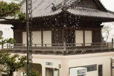 https://flic.kr/p/DcqPq3 | Shikoku
