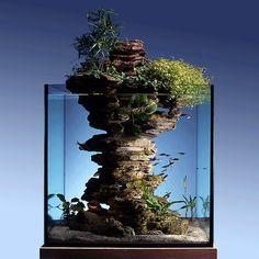Question décoration, on ne pense pas assez à jouer avec les aquariums. Petits ou grands, avec un poisson ou plusieurs et plus ou moins de végétation, ils apportent vie, lumière...