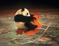 panda on rocking horse