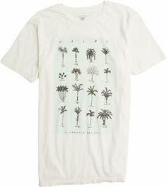 palm tree tee. http://www.swell.com/New-Arrivals-Mens/FREEDOM-ARTISTS-PALMS-SS-TEE?cs=OF