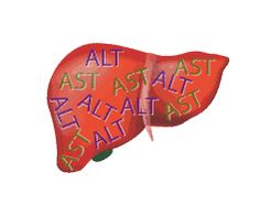 http://liverbasics.com/high-liver-enzymes.html Experiencing increased liver enzyme levels is frequently a sign of serious liver problems. You are able to usually tell by the kind of enzymes and levels of change.