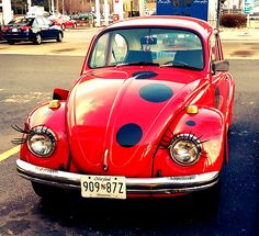 You just never know what you're going to see each day. Ladybug car rules.     #vwbug #ladybugs