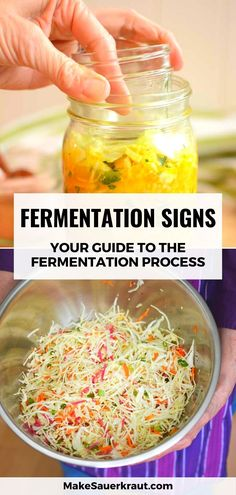 How will you know if your cabbage is already fermented? What fermentation signs should you monitor? Bubbles rising to the surface, smell, color, overflowing brine, dry sauerkraut. Watch out for these signs. This comprehensive guide will lead you through the fermentation process of homemade sauerkraut and other fermented vegetables. Zucchini Relish, Homemade Sauerkraut, Fermentation Recipes, Fermented Foods, Kimchi, Paleo Diet, Vegetable Recipes, Grain Free, Paleo Recipes