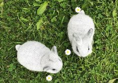 Cuclandia: Rabbit Crochet Rabbit, Origami, Projects To Try, Crochet Patterns, Bird, Knitting, Holland Lop Bunnies, Crochet Animal Amigurumi, Easter Bunny