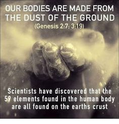 Scientists discovered our bodies are made from 59 elements of the ground from the earths crust supporting Genesis ❥ May people know that you, whose name is Jehovah,You alone are the Most High over all the earth ❥ Psalm ❥ JW. Christian Life, Christian Quotes, Christian Living, Bible Scriptures, Bible Quotes, Typed Quotes, Bible Teachings, Truth Quotes, Adonai Elohim