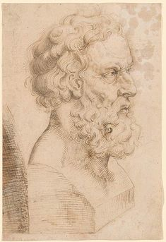 Potrait Drawing Circle of Peter Paul Rubens Peter Paul Rubens, Figure Drawing, Painting & Drawing, Pedro Pablo Rubens, Rubens Paintings, Pencil Drawing Inspiration, Academic Drawing, Florence Academy Of Art, Realism Artists