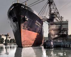 Sailing Ships, Opera House, Boat, Paris, Building, Travel, Color, Photographers, Eyes