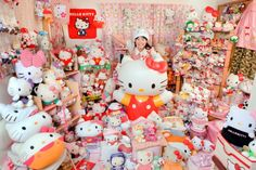 "according to the Guinness World Records Asako Kanda in Japan has 4,519 different ""Hello Kitty"" items. can you count all the ""Hello Kitty"" items in your own collection?"