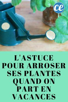 L'Astuce de Génie Pour Arroser Ses Plantes Quand On Part En Vacances.