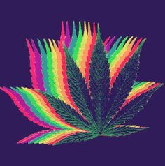 Trippy Drugs - Buy pipes, bongs, vapes and salvia online at http://bit.ly/1FID0rg