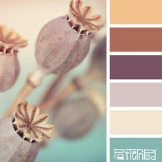 Peaceful Pods #Color #Palette