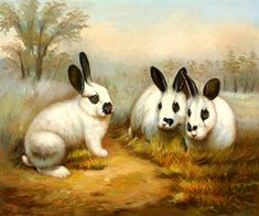 paintings of wild rabbits | Black and White Rabbits - Black Art, oil paintings on canvas.