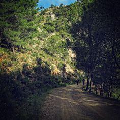 Sierra de Alcaparaín