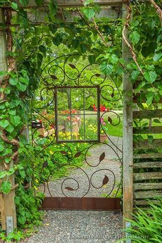 A view through a garden gate with glass window sheltered by a climbing hydrangea entwined on the pergola. ~ Style Estate - 15 Gorgeous Garden Gates