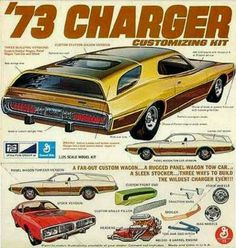 """Not sure how I feel about this...,!  Would Look Good on an ElCamino Body though """"!"""""""