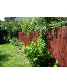 Wicker Mats – Screening Mats Willow - All About Garden Fencing, Fence, Save The Planet, Wicker, Alternative, Leaves, Plants, Gardening, Decor