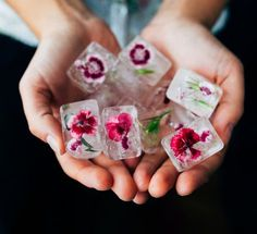 Rose petal ice cubes are a traditional Icelandic treatment, ready to tighten pores and reduce skin inflammation.
