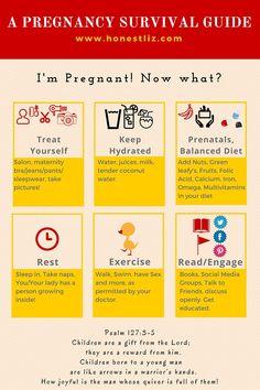 Survival Guide for a Happy Pregnancy Honestliz [Infographic]