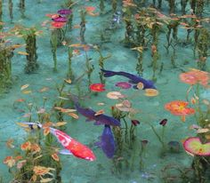 It is real pond, such as like the Claud Monet paintings in Seki, Gifu pref. Not a painting. Photowall Ideas, Carpe Koi, Gifu, Nature Aesthetic, Blue Aesthetic, Belle Photo, Pretty Pictures, Aesthetic Pictures, Aesthetic Wallpapers