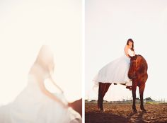 Weddings and Horses