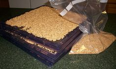 sprouting, dehydrating, and grinding sprouted wheat