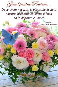 Optimism, Floral Wreath, Wreaths, Table Decorations, Google, Model, Floral Crown, Door Wreaths