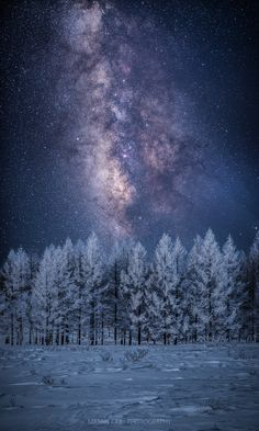 ~~Milky Way over a Winter tree | snowy nightscape, Japan | by Masaki Kaji~~