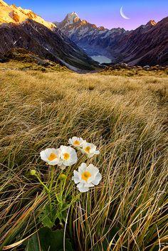 Mount Cook, New Zealand   Photographer: Rob Dickinson