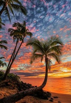 Beautiful sunset at the beach. Colorful scenery.