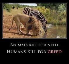#greed