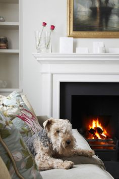 Interior Design Inspiration – Our portfolio showcases how we transformed a London townhouse into a traditional family home with an elegant country feel. London Townhouse, Notting Hill, Interior Design Inspiration, Home And Family, Home Decor, Decoration Home, Room Decor, Home Interior Design, Home Decoration