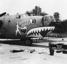 "B-24J 42-109967 of the 308th BG, 374th Bomb Squadron ""Buzz Z Buggy"" nose art"