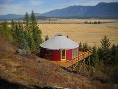 Shelter Designs yurt