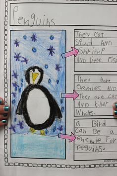 Nonfiction 'All About Penguins' book
