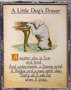 A little dog's prayer