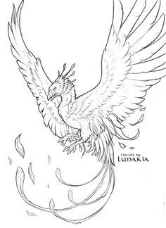 Free Phoenix Lineart by Lunakia on DeviantArt