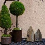 Bäume aus Moos - DIY