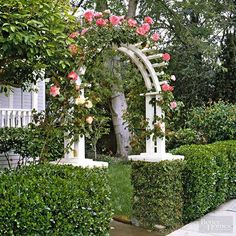 Add a sense of surprise with an arbor. Here, a crisp white arbor rises out of a boxwood hedge and is crowned dramatically with climbing roses. Incorporate an arbor into a hedge, or use a mix of materials, such as wood, metal, or stone to create your arbor.