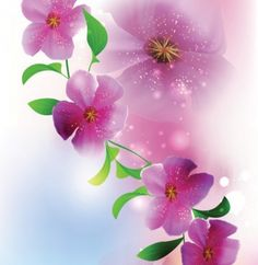 Spring background with purple flowers